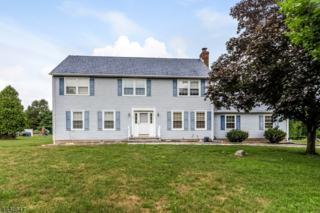 12 Fieldstone Pl, Raritan Twp., NJ 08822 (MLS #3322615) :: The Dekanski Home Selling Team