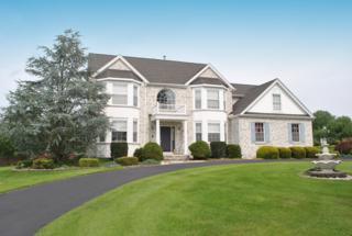 10 Fieldhedge Ln, Lopatcong Twp., NJ 08865 (MLS #3323096) :: The Dekanski Home Selling Team