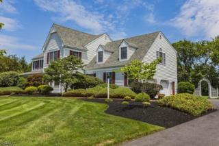87 Wilshire Dr, Montgomery Twp., NJ 08502 (MLS #3323499) :: The Dekanski Home Selling Team