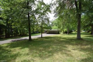 121 Branch Rd, Bridgewater Twp., NJ 08807 (MLS #3325006) :: The Dekanski Home Selling Team