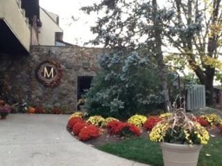 2 Chamonix Dr, Unit 328, Vernon Twp., NJ 07462 (MLS #3327238) :: The Dekanski Home Selling Team