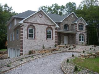 16 Lourdes Ct, Andover Twp., NJ 07821 (MLS #3327293) :: The Dekanski Home Selling Team