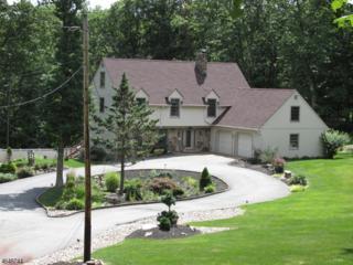 7 Rockburn Pass, West Milford Twp., NJ 07480 (MLS #3327835) :: The Dekanski Home Selling Team