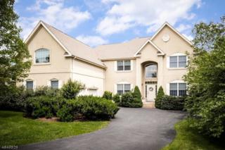 10 Banyan Rd, Montgomery Twp., NJ 08558 (MLS #3328636) :: The Dekanski Home Selling Team