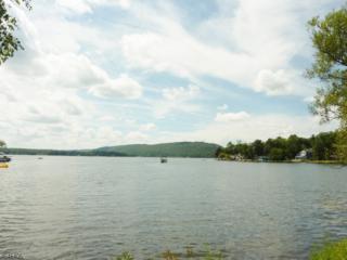 80 Ridge Rd, Frankford Twp., NJ 07826 (MLS #3328947) :: The Dekanski Home Selling Team