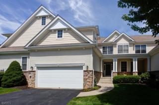 3 Osprey Ct, Washington Twp., NJ 07882 (MLS #3329029) :: The Dekanski Home Selling Team