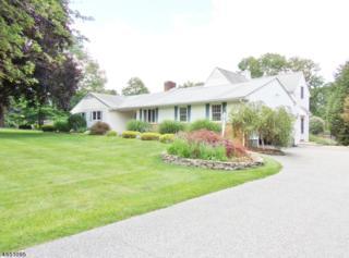 3 Club Rd, Andover Twp., NJ 07860 (MLS #3330060) :: The Dekanski Home Selling Team