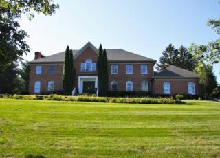 36 Jacobean Way, Mahwah Twp., NJ 07430 (MLS #3330146) :: The Dekanski Home Selling Team