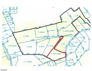 1 Alexandria Overlook, Alexandria Twp., NJ 08848 (MLS #3330989) :: The Dekanski Home Selling Team