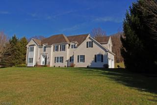 67 Old Turnpike Rd, Washington Twp., NJ 07865 (MLS #3332071) :: The Dekanski Home Selling Team