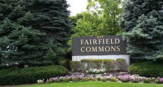 271 271 US-46, Fairfield Twp., NJ 07004 (MLS #3332460) :: The Dekanski Home Selling Team