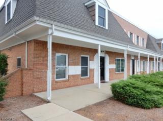 121 Shelley Drive, Hackettstown Town, NJ 07840 (MLS #3332821) :: The Dekanski Home Selling Team