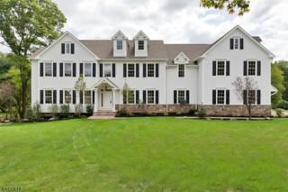 8 Sneider Rd, Warren Twp., NJ 07059 (MLS #3334273) :: The Dekanski Home Selling Team