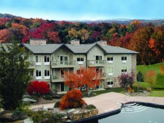 2 Chamonix Dr, Unit 306, Vernon Twp., NJ 07462 (MLS #3336634) :: The Dekanski Home Selling Team