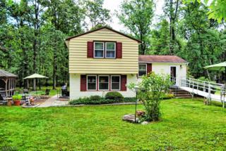 12 Burd Ln, East Amwell Twp., NJ 08525 (MLS #3336910) :: The Dekanski Home Selling Team