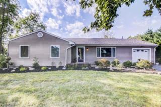 411 County Road 523, Readington Twp., NJ 08889 (MLS #3337395) :: The Dekanski Home Selling Team