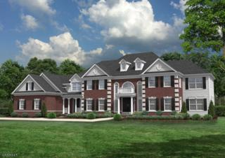 0 Jamieson Way, Hillsborough Twp., NJ 08844 (MLS #3337461) :: The Dekanski Home Selling Team