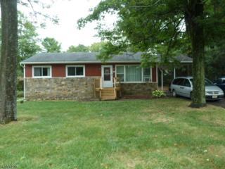44 Old Coach Rd, Vernon Twp., NJ 07462 (MLS #3337597) :: The Dekanski Home Selling Team