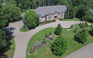 6 Finn Ct, Mahwah Twp., NJ 07430 (MLS #3337723) :: The Dekanski Home Selling Team
