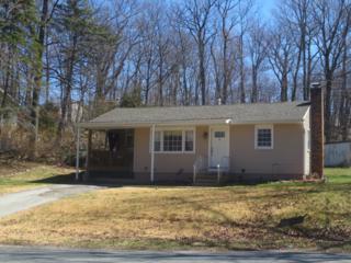 28 Barry Dr N, Vernon Twp., NJ 07422 (MLS #3337847) :: The Dekanski Home Selling Team