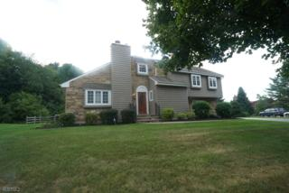 33 Knob Hill Rd, Washington Twp., NJ 07840 (MLS #3338394) :: The Dekanski Home Selling Team