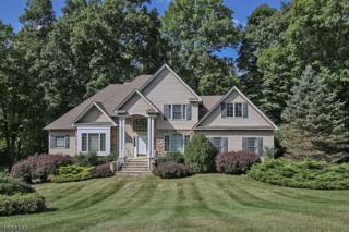 2 Hidden Valley Rd, Andover Twp., NJ 07860 (MLS #3338691) :: The Dekanski Home Selling Team