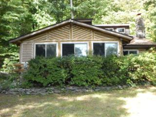64 Bearfort Rd, West Milford Twp., NJ 07480 (MLS #3338711) :: The Dekanski Home Selling Team