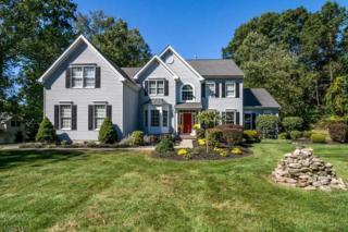 6 Allyson Ct, Washington Twp., NJ 07853 (MLS #3340293) :: The Dekanski Home Selling Team