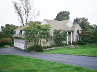 12 Newstar Ridge, Sparta Twp., NJ 07871 (MLS #3340309) :: The Dekanski Home Selling Team