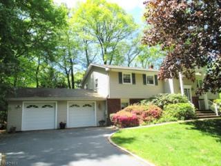 3 Sue Ct, Denville Twp., NJ 07834 (MLS #3340513) :: The Dekanski Home Selling Team