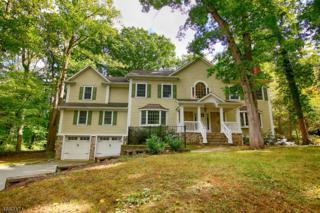 79 Primrose Trl, Harding Twp., NJ 07960 (MLS #3341364) :: The Dekanski Home Selling Team