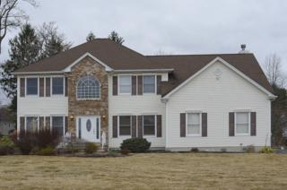 342 Dover Chester Rd, Randolph Twp., NJ 07869 (MLS #3341736) :: The Dekanski Home Selling Team