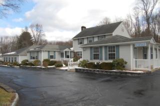 2024 Macopin Rd, West Milford Twp., NJ 07480 (MLS #3342088) :: The Dekanski Home Selling Team