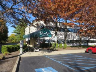 1250 State Route 28, Branchburg Twp., NJ 08876 (MLS #3342145) :: The Dekanski Home Selling Team