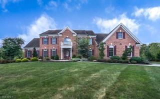 10 Ridgeline Dr, Washington Twp., NJ 07853 (MLS #3342539) :: The Dekanski Home Selling Team