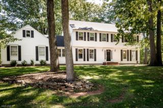 100 Michelle Ln, Hillsborough Twp., NJ 08844 (MLS #3342587) :: The Dekanski Home Selling Team