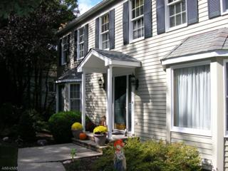 21 October Hill Rd, Jefferson Twp., NJ 07438 (MLS #3342774) :: The Dekanski Home Selling Team