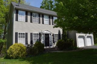 18 Manning Ct, High Bridge Boro, NJ 08829 (MLS #3342858) :: The Dekanski Home Selling Team