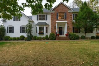 375 River Rd, Branchburg Twp., NJ 08876 (MLS #3343049) :: The Dekanski Home Selling Team