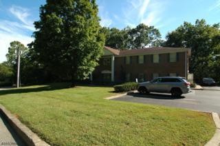 8 Manor Drive, Hampton Boro, NJ 08827 (MLS #3343348) :: The Dekanski Home Selling Team