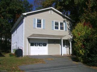317 Wills Ave, Hopatcong Boro, NJ 07874 (MLS #3343888) :: The Dekanski Home Selling Team