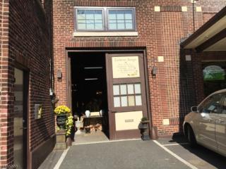 145 Dunnell Rd, Maplewood Twp., NJ 07040 (MLS #3343952) :: The Dekanski Home Selling Team