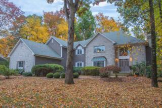 3 Canterbury Ct, Randolph Twp., NJ 07869 (MLS #3344173) :: The Dekanski Home Selling Team