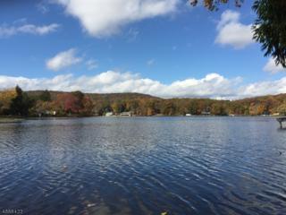 3 Pine Pt, Ln, Byram Twp., NJ 07874 (MLS #3344294) :: The Dekanski Home Selling Team
