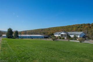 284 W Mill Rd, Washington Twp., NJ 07853 (MLS #3344353) :: The Dekanski Home Selling Team