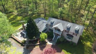 209 Locktown Serg Rd, Delaware Twp., NJ 08559 (MLS #3345052) :: The Dekanski Home Selling Team