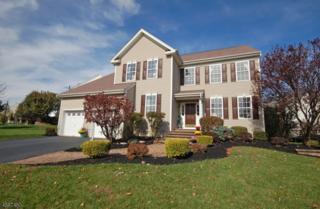 11 Eagles Pass, Franklin Twp., NJ 08540 (MLS #3345519) :: The Dekanski Home Selling Team