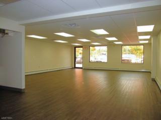 172 Landing Rd, Suite 2, Roxbury Twp., NJ 07850 (MLS #3345716) :: The Dekanski Home Selling Team