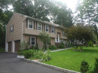 10 Daniel St, Chatham Twp., NJ 07928 (MLS #3346480) :: The Dekanski Home Selling Team