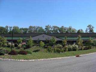 108-110 Hillcrest Ave, Roxbury Twp., NJ 07852 (MLS #3346666) :: The Dekanski Home Selling Team